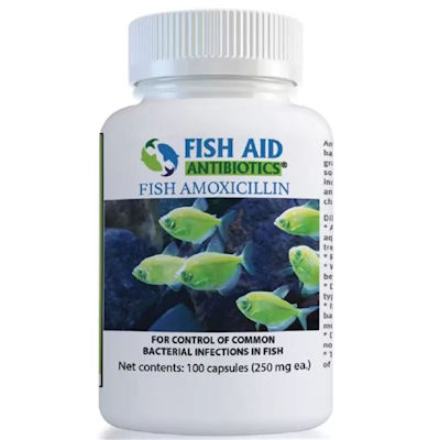 Fish Aid Amoxicillin -250 mg/100 Capsules- In Stock