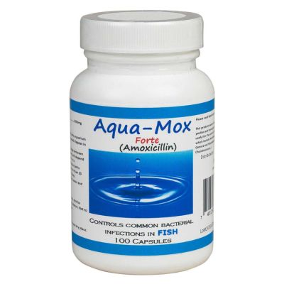 Aqua-Mox  Forte - 500 mg - 100 capsule bottle