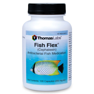 Fish Flex - Cephalexin - 250mg/100capsules