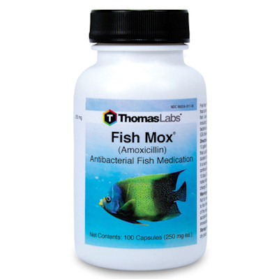 Fish Mox capsules - 250mg - 100count bottle