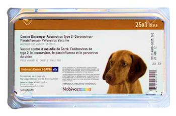 Nobivac:Canine 1-DAPPV + CV (Corona)