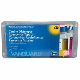 Vanguard Plus 5/CV - Zoetis