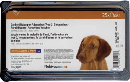 Nobivac Canine 1-DAPPv+ L4 (25 doses)